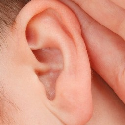 Active Listening: How to be a Good Listener